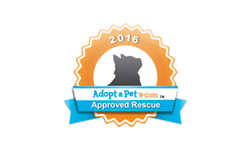 logo-partner-adoptapet